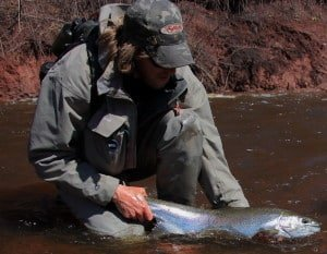 Steelhead_website
