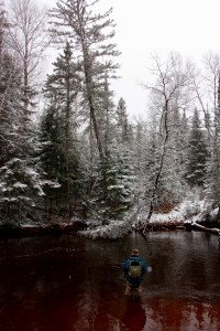 Lake Superior Trout and Steelhead Guided Fly Fishing