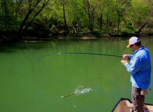 Far Out Fly Fishing Winter Fishing Opportunities